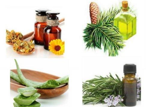 Пихтовое и облепиховое масло при лечении простатита
